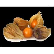 Physalis (Mochyně) - Španělsko (bedna 10 x 100 g)