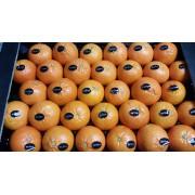 Mandarinky Tacle cal. 2-3 - Itálie (bedna 6 kg)