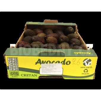 Avokádo Hass cal. 20-24 - Peru (bedna 4 kg)