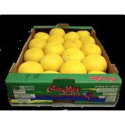 Grapefruit žlutý - Itálie (bedna 10 kg)