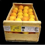 Grapefruit červený - Ruby Star - Jihoafrická republika (bedna 15 kg)