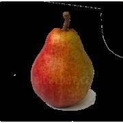 Hrušky Red Bartlett červené - Itálie (bedna 15 kg)
