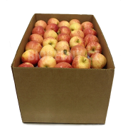 Jablka - Delprivale - Itálie (bedna 13 kg)