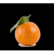 Mandarinka klementina cal. 2-3 - Španělsko (bedna 7 kg)