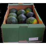 Meloun vodní mini bez pecek cal. 10 - Španělsko (bedna 14 kg)