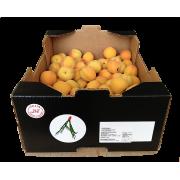 Meruňky červené - Orange Ruby cal. 35+ - Itálie (bedna 5 kg)