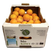 Pomeranče Valencia cal. 4-6 - Itálie (bedna 8 kg)
