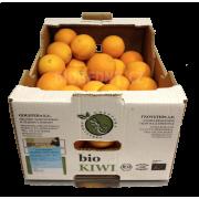 Pomeranče Lane Late - Itálie (bedna 7 kg)
