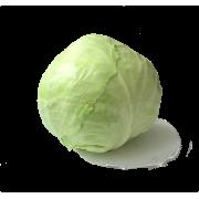 Bílé zelí  - Itálie (bedna 8-10 ks, 8 kg)