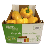 Paprika žlutá cal. L - Izrael (bedna 5 kg)