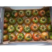 Rajčata Costoluto - Itálie (bedna 5 kg)
